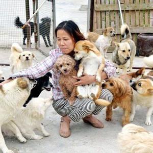 马鞍山市流浪动物志愿救助站