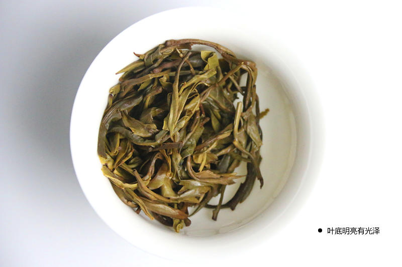 普洱生茶1_r16_c1.jpg