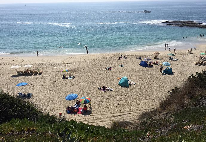 18. 哈罗德寻找写作灵感的海滩.jpg
