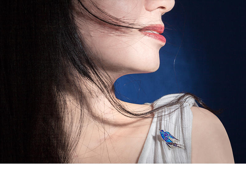 飞燕胸针佩戴1.jpg