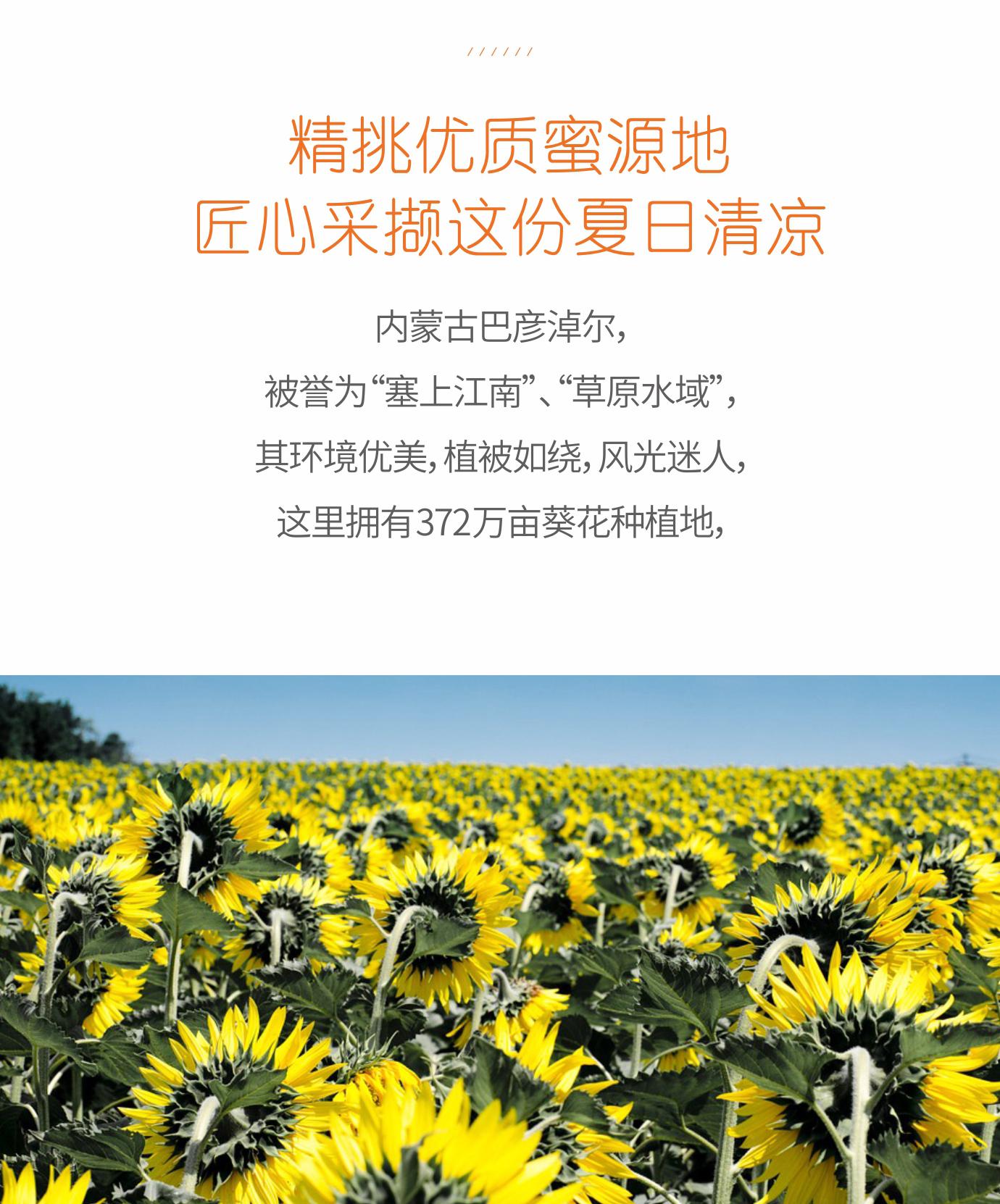 葵花蜂蜜3_14.jpg
