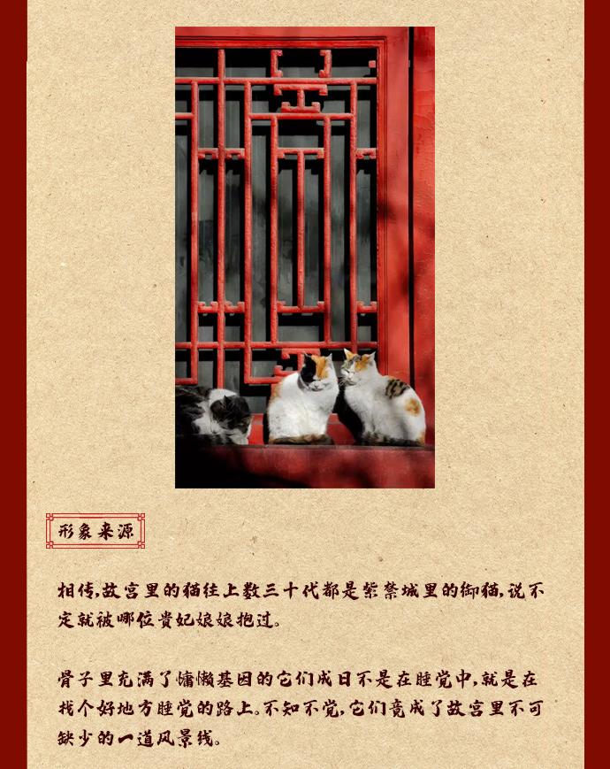 玉玺猫_04.jpg