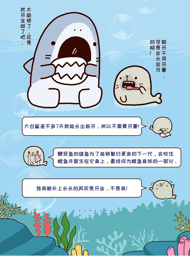 小鲨鱼_04.jpg