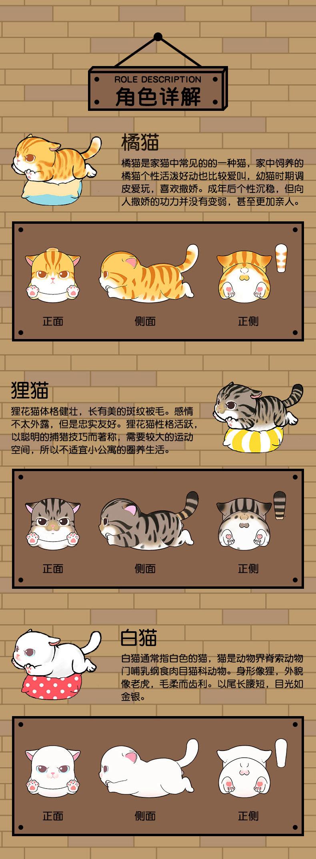 肥宅猫详情 (3).jpg