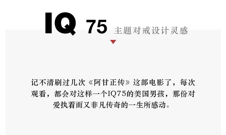 IQ75详情页2020A2-拷贝-2_08.jpg