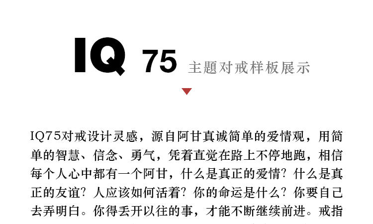 IQ75详情页2020A2-拷贝-2_13.jpg