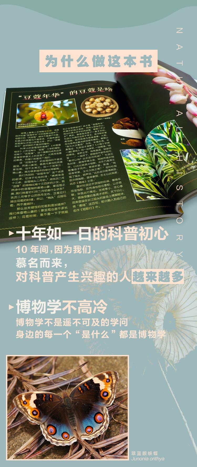 摩点页面_09.jpg