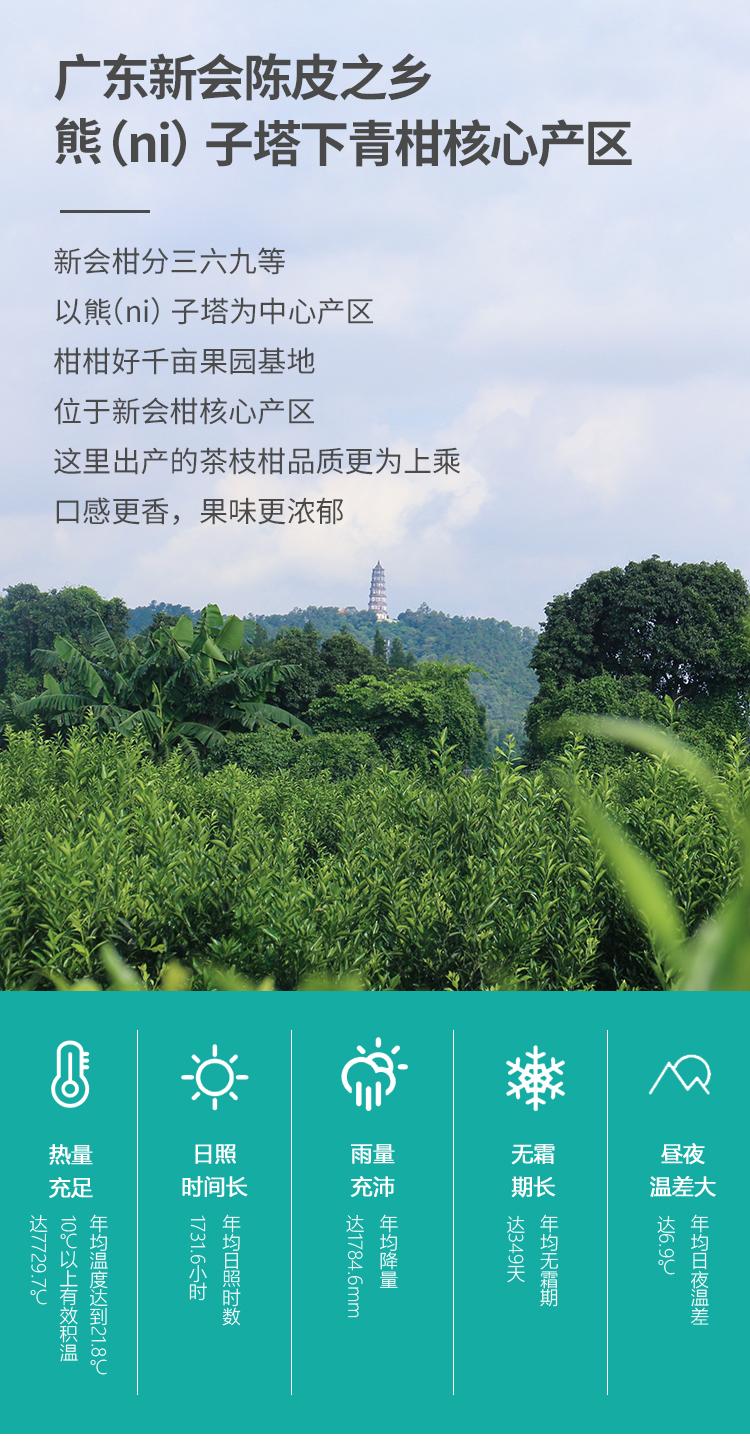 20200615小青柑罐装80克详情页_06.jpg