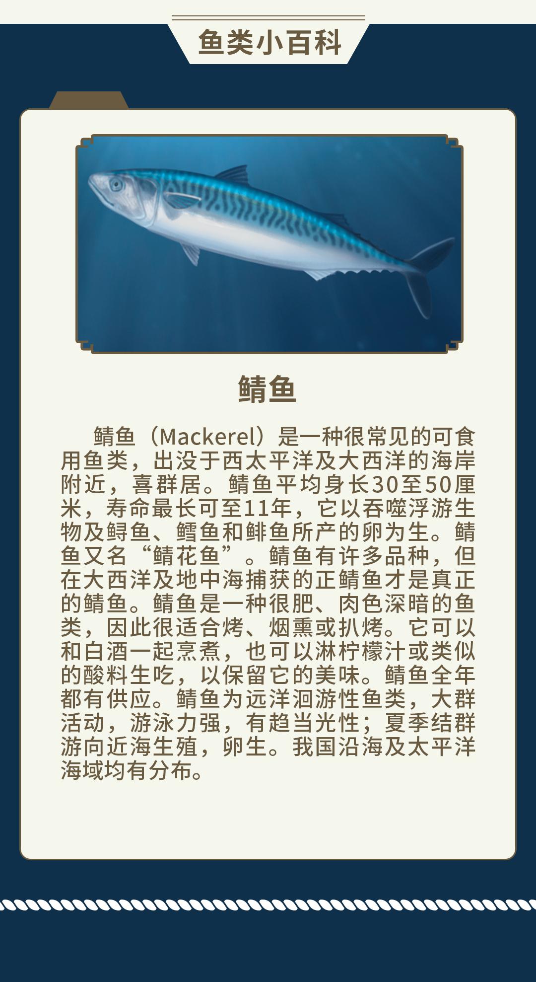 鱼类知识-7.png