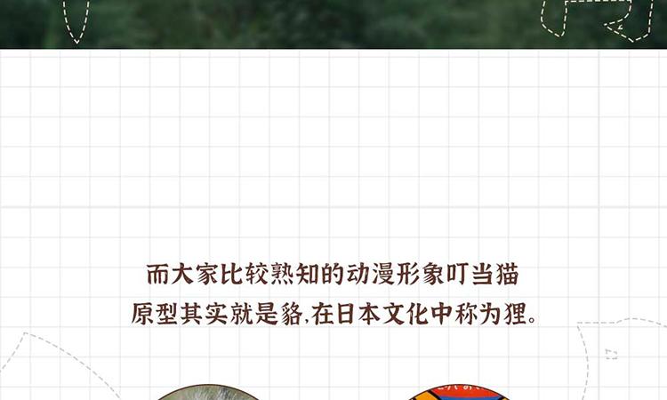众筹详情页_03-06.jpg