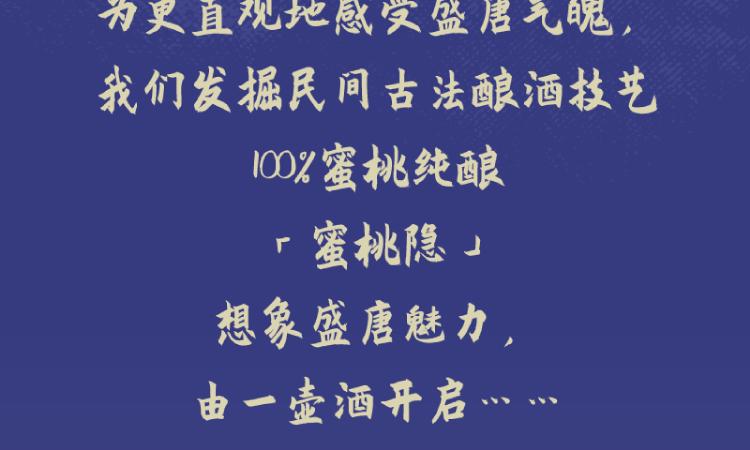 唐朝的想象力详情页-04.png