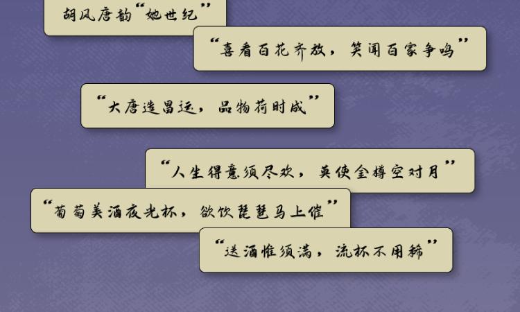 唐朝的想象力详情页-07.png