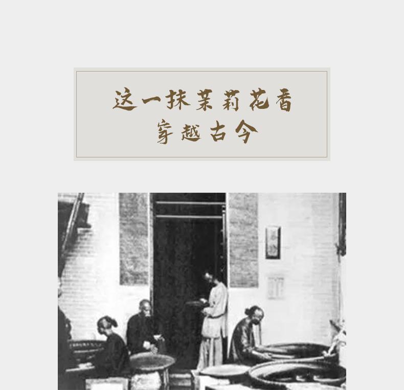 20200819-790茉莉花茶_06.jpg