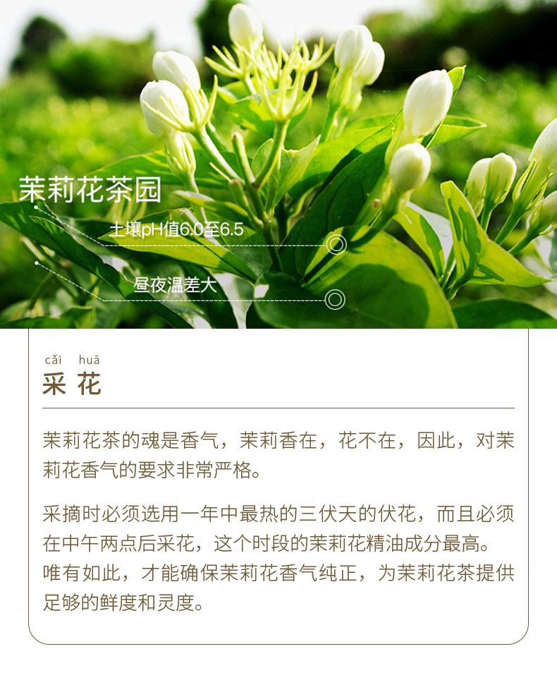 20200819-790茉莉花茶_20.jpg