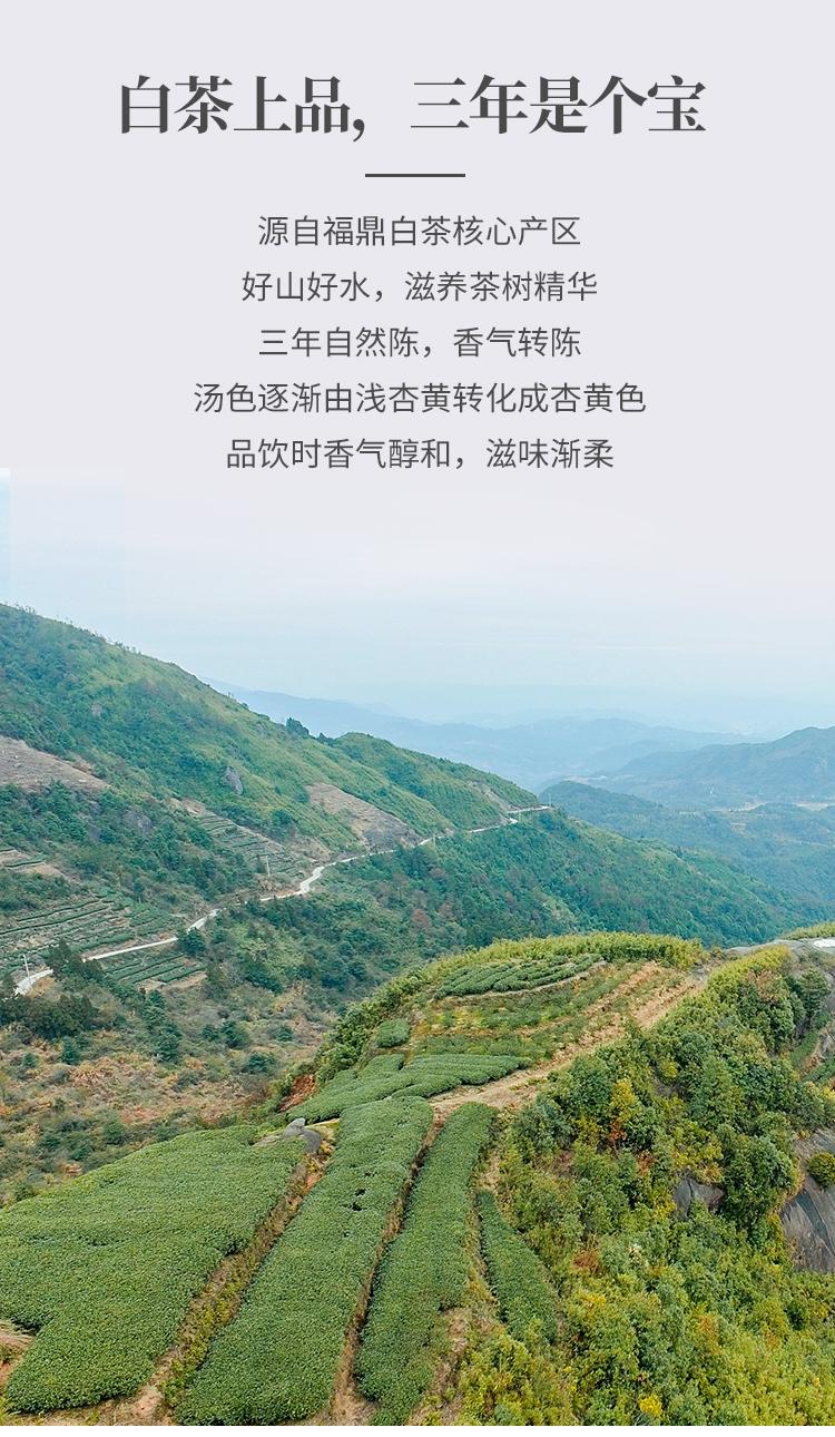 陈皮白茶小圆罐50g详情页_07.jpg