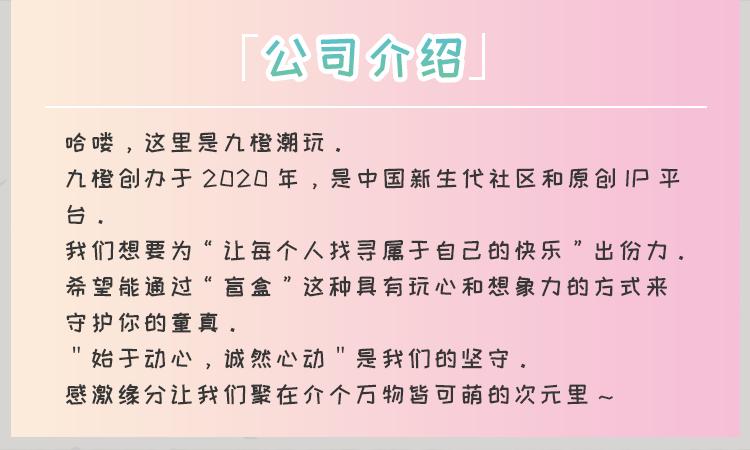 23-公司介绍.png